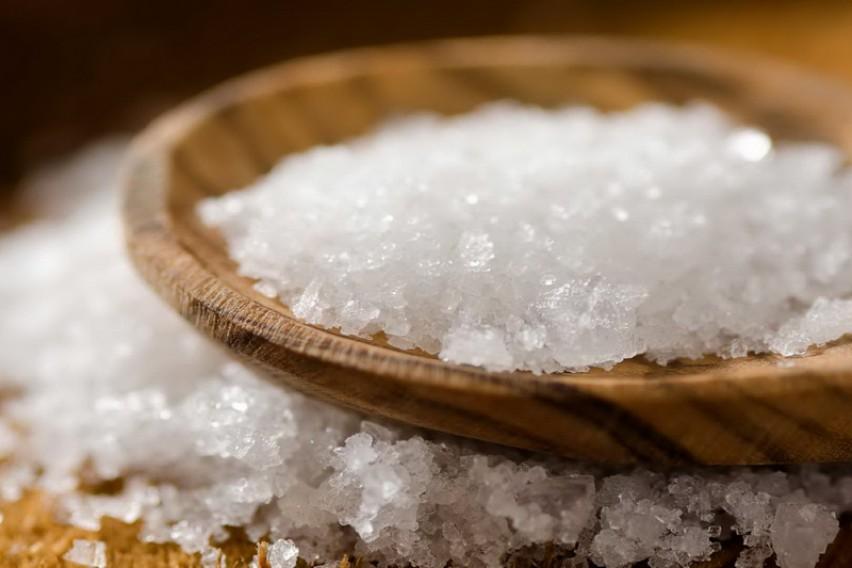 Откритие кое менува сè  Солта нè прави гладни  а не жедни