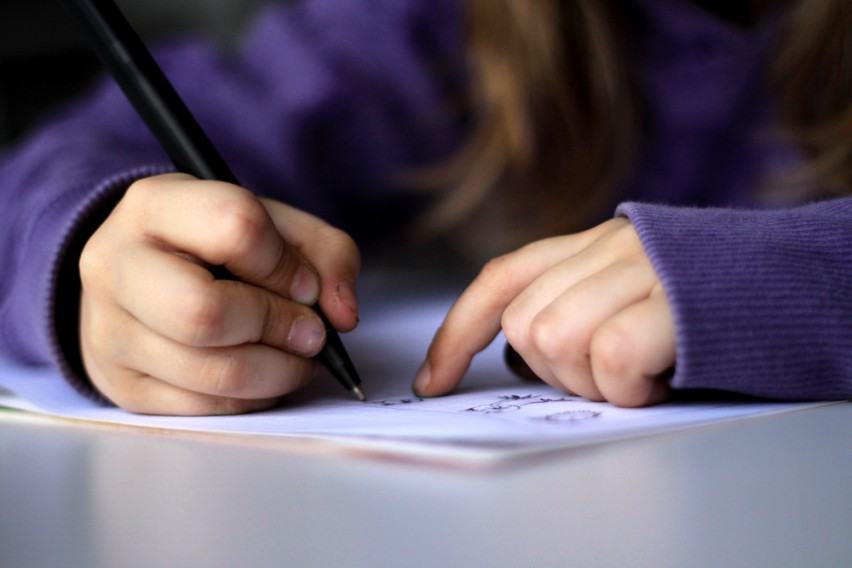 essay computer education css forum